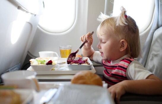 Long Haul Flights With Young Kids:  What to Pack Carry-On and In-flight Meals (Part 2)