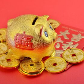Year Of The Golden Pig 2007: Luckiest Lunar New Year to Have a Baby