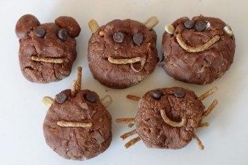 No Bake Chocolate Coconut Cookies - Animals
