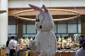 Ritz Easter Bunny