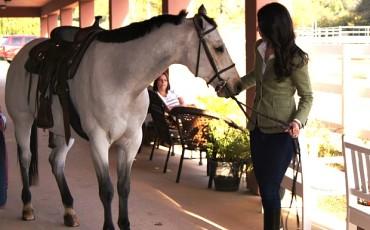 The Grande Del Mar Equestrian Center