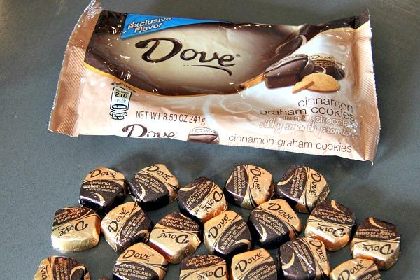 Dove Cinnamon Graham Cookies in Milk Chocolate