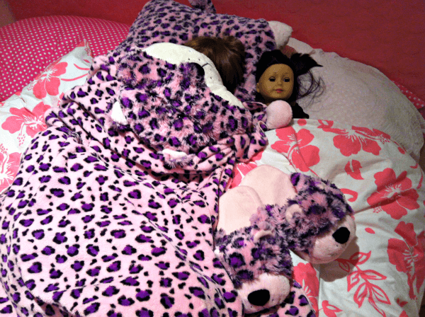 Lulu Leopard Pillow Pet Blanket
