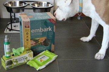 Eco-friendly Green Pets