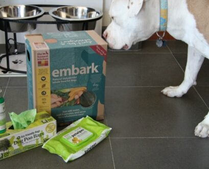 7 Ways To Green Your Pet