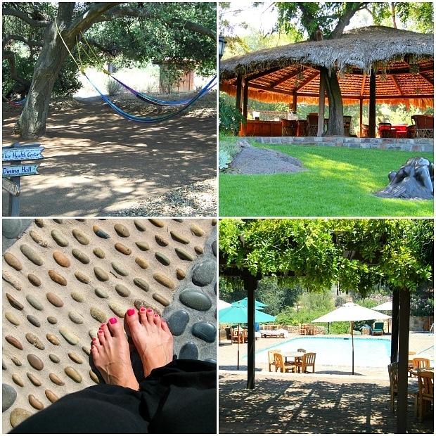Rancho La Puerta Spa Tecate Mexico