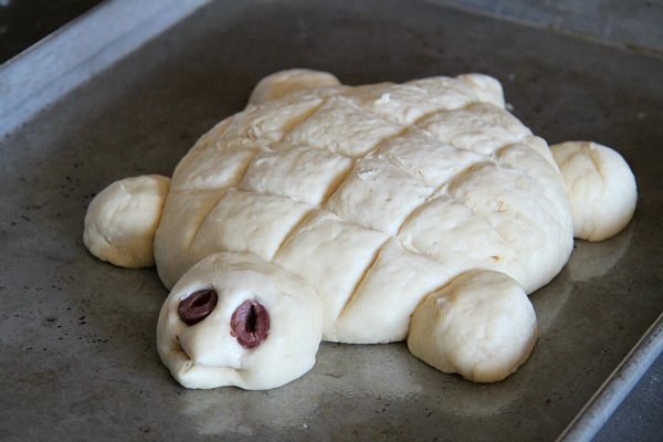 Turtle Bread Recipe Dough