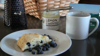 Green Mountain Coffee Blueberry Breakfast