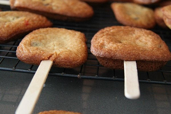 Cake-Sicle Cookie Popsicle Sticks
