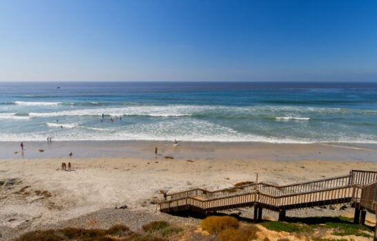 How to Choose a Hilton Hotel in San Diego