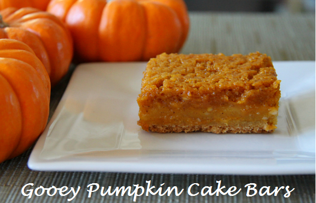 gooey pumpkin bars cake dessert recipe