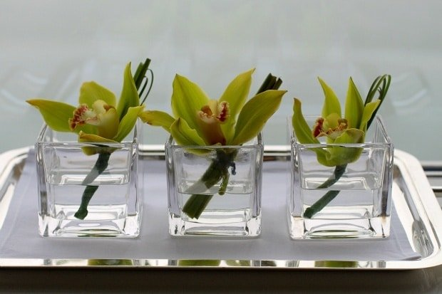 Easy Single Bloom Orchid Flower Arrangements