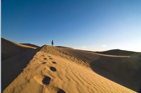 Walking in the dunes Yuma, AZ
