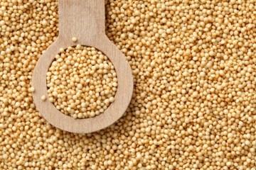Is amaranth a grain