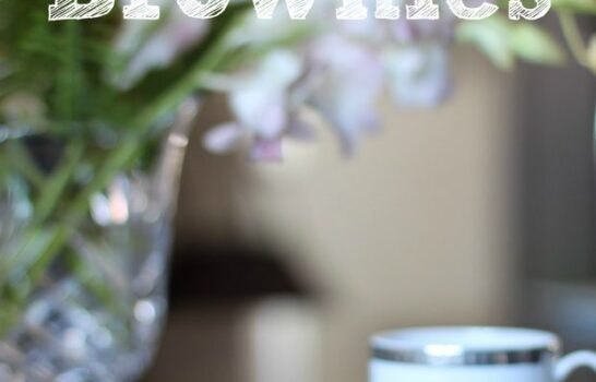 Tiramisu Brownie Recipe (With Optional Raspberry Preserves)