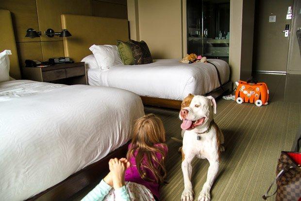 Pet Friendly Hotels La Jolla