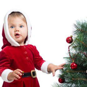 How To Choose A Christmas Tree