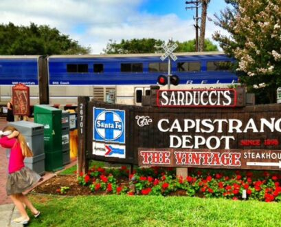 Take the Amtrak Pacific Surfliner Train from San Diego to Orange County