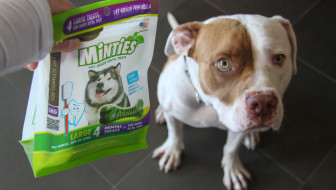 Dog Dental Health Minties
