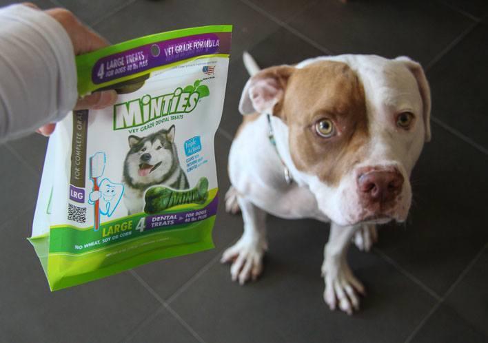 Dog Dental Health Minties
