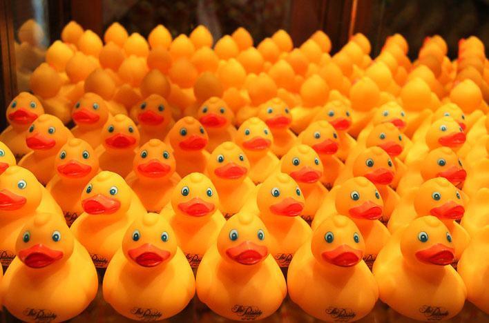 The Peabody Memphis Ducks