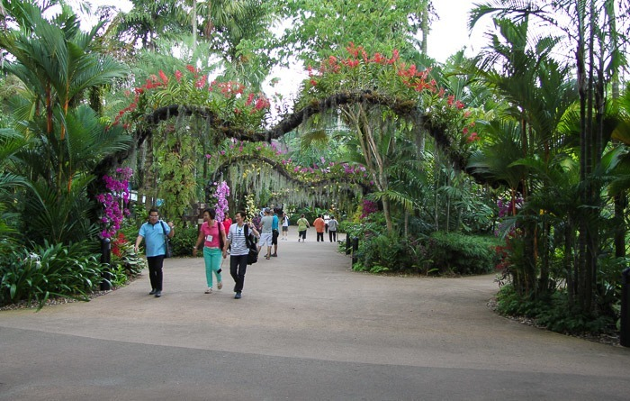 Jurong Bird Park Orchid Arches