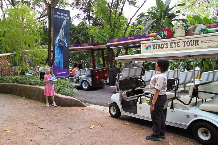 Singapore with Kids- Jurong Bird Park Feeding Frenzy Tour
