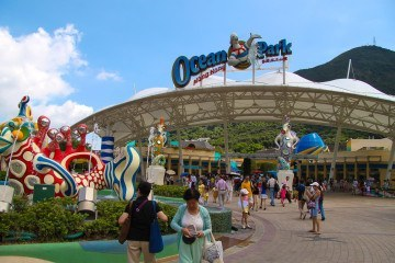 Ocean Park is one of the best attractions in Hong Kong for kids