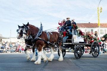 La Jolla Christmas Parade Float