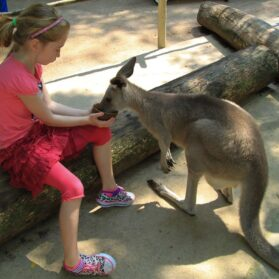 12 Things to Do in Singapore With Kids