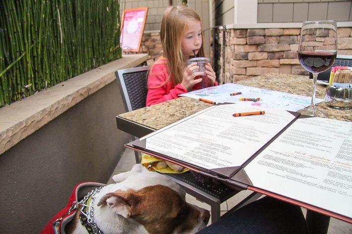 Bistro West Pet Friendly Restaurant Carlsbad