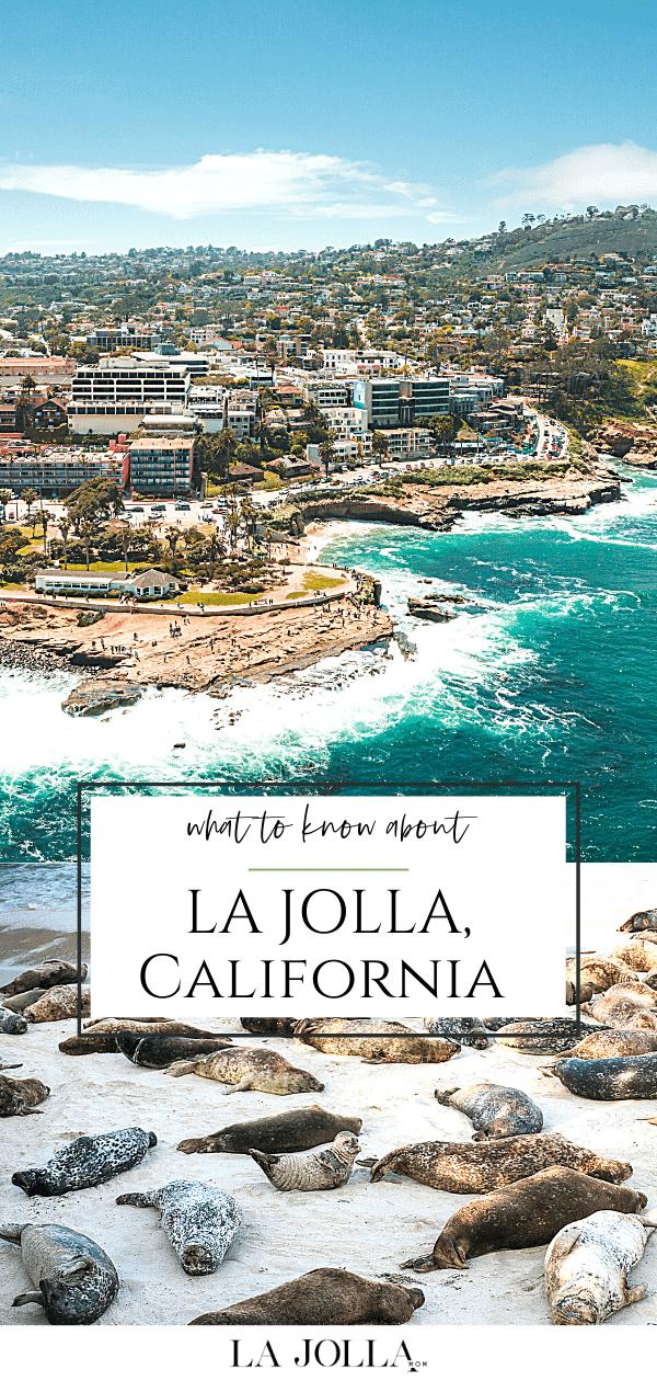 Réponses aux FAQ sur la communauté balnéaire de La Jolla, en Californie, à San Diego, pour ceux qui ne connaissent pas ses qualités et ses attractions uniques.