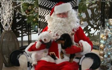 Santa at Hotel La Jolla