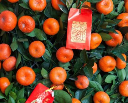 Why You Need Mandarin Orange Or Kumquat Trees During Chinese New Year