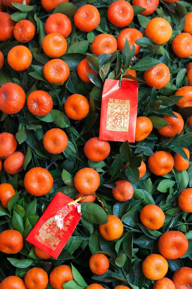 Why Mandarin Orange Or Kumquat Trees Chinese New Year