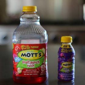 Cool Down with Mott's Juice Drink Frozen Treats