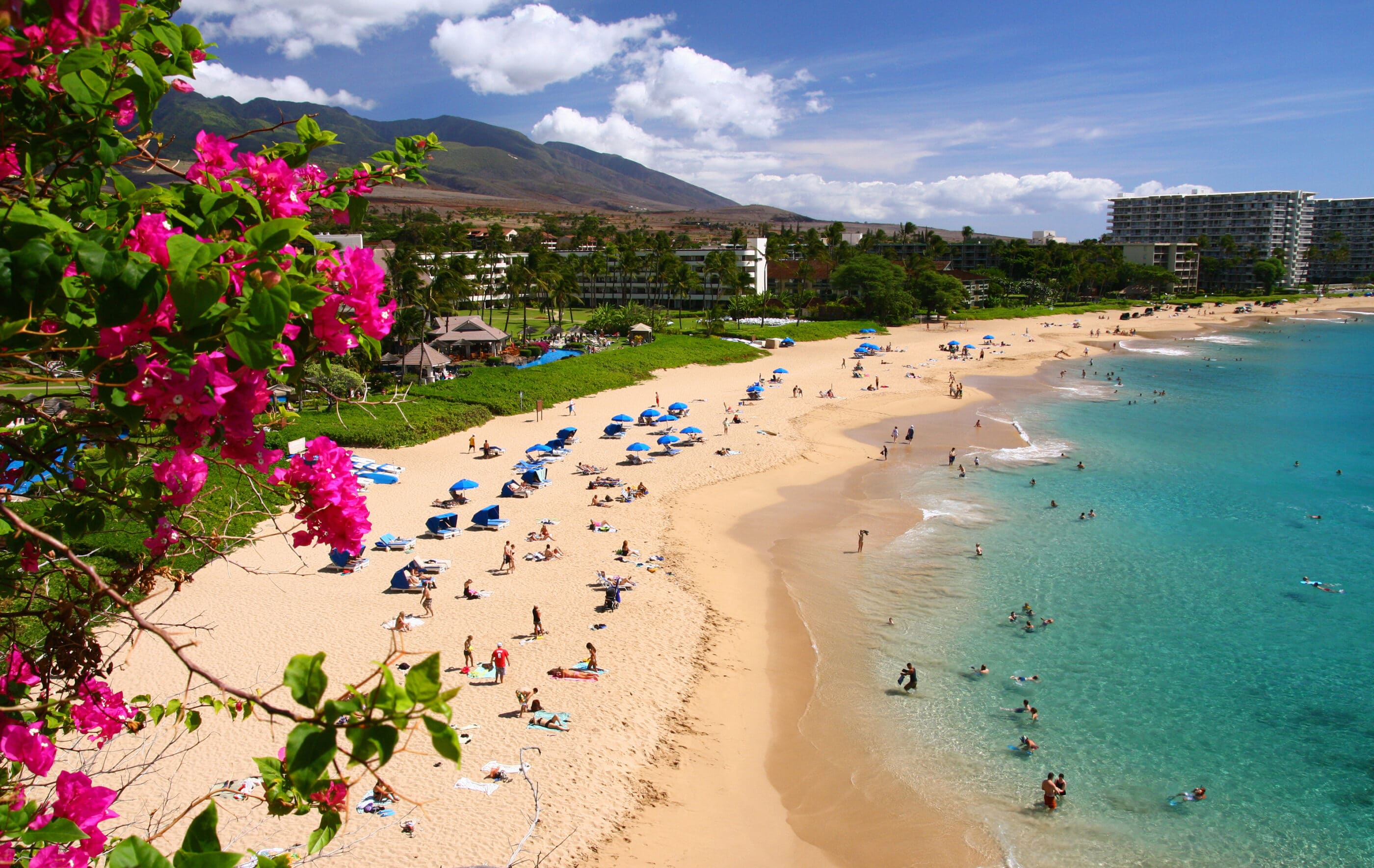 People dotting the Kaanapali beach on a sunny day