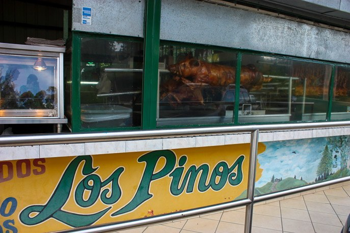 lechon pig in puerto rico