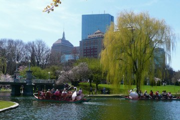 things to do in boston massachussets