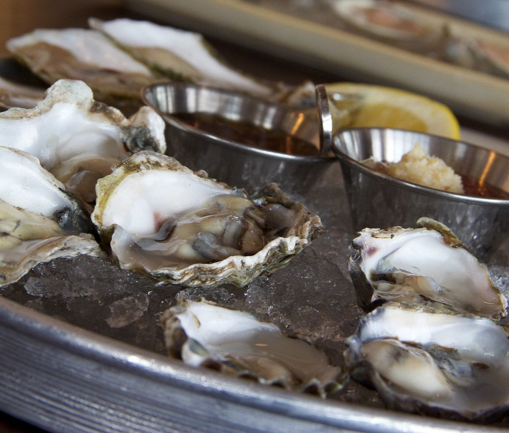 what to eat in boston seafood