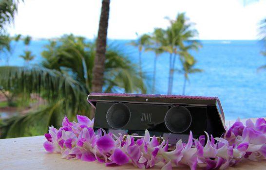 Luxury Travel Gear: Stelle Audio Couture Clutch