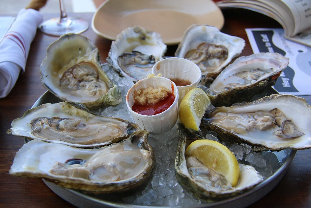 where to eat boston legal seafood harborside