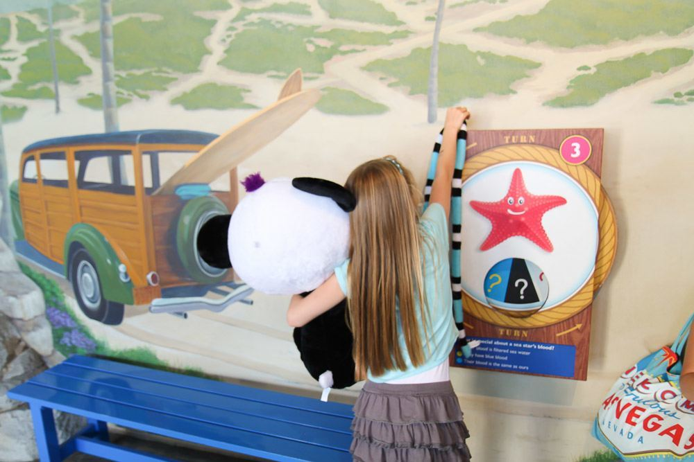 SEA LIFE Aquarium quiz trail