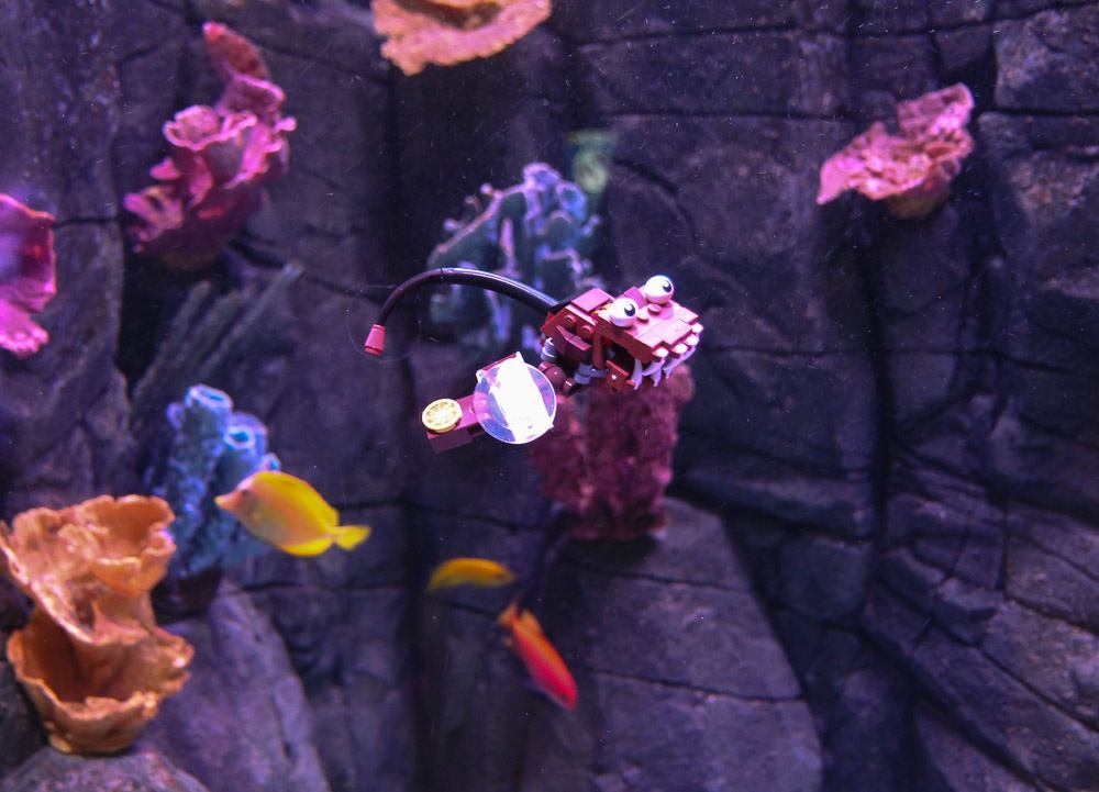 LEGO figures inside exhibits at SEA LIFE Aquarium Carlsbad