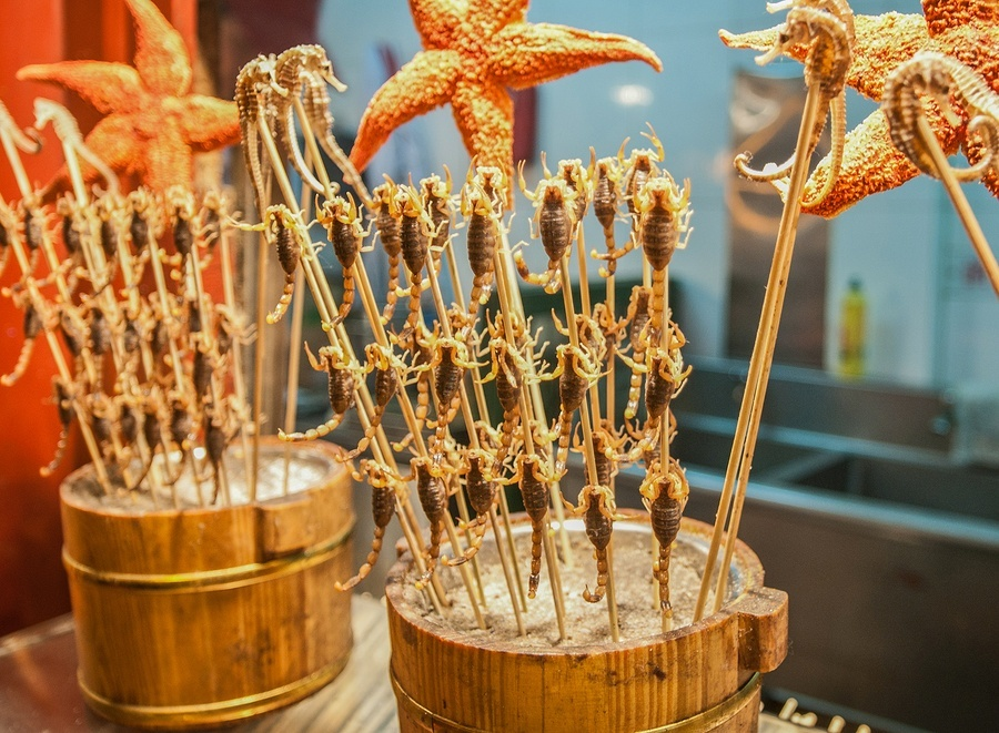 Wangfujing Snack Street Scorpions on a Stick