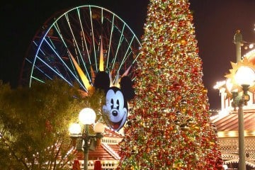 Disneyland Resort Holidays