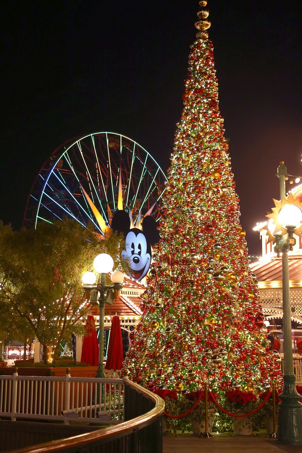 10 Reasons To Visit Disneyland Resort During The Holidays