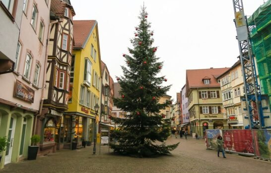 6 Things to Do in Wertheim, Germany