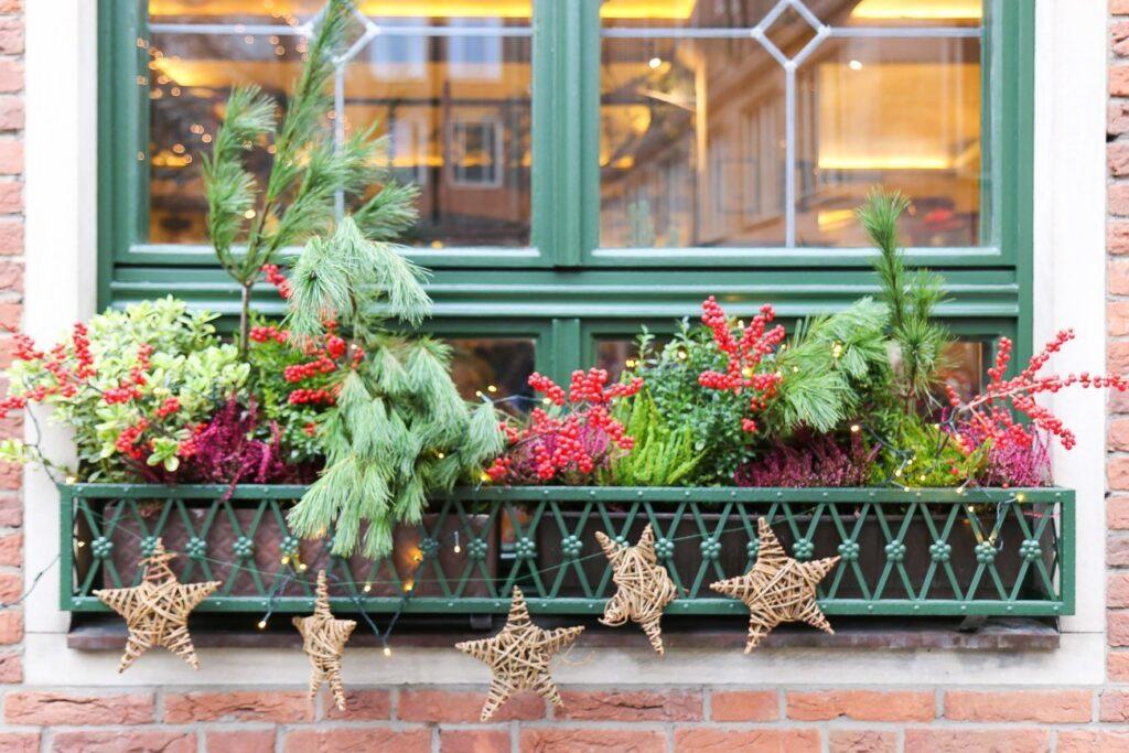 A Christmas window box in Nuremberg
