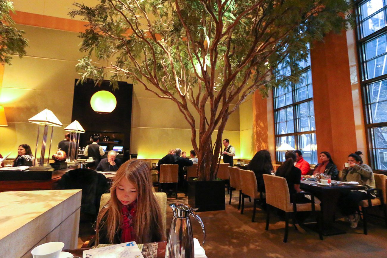 The Garden restaurant at Four Seasons Hotel New York has an enchanted forest feel with giant acacia trees.